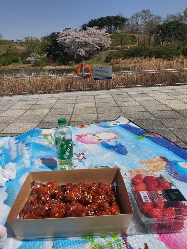 picnic at olympic park